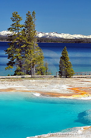 Thermal pool & Yellowstone Lake