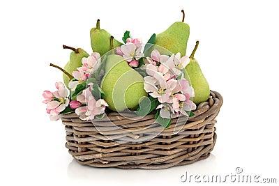αχλάδια λουλουδιών αν&theta