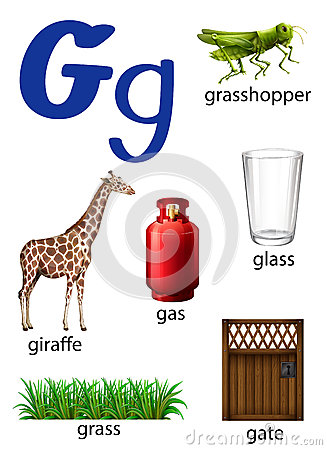 Images Of Things Start With Letter G