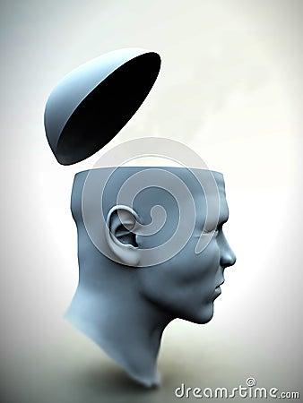 Think Head 10