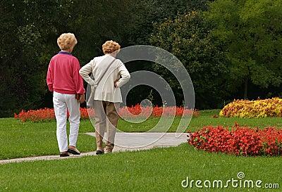 Third Age Walking