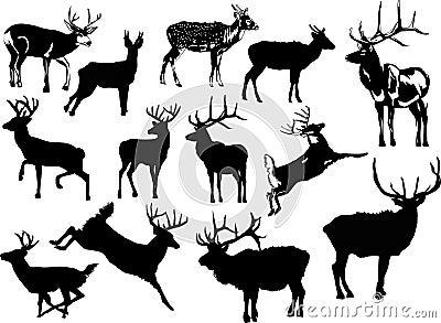 Thirteen deer silhouettes