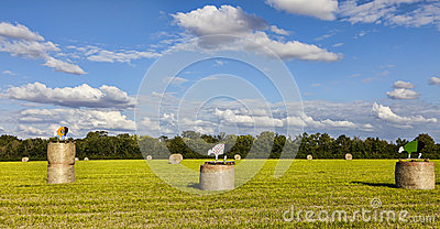 Field During Le Tour de France Editorial Stock Photo