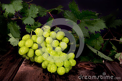 Thompson Seedless Grapes