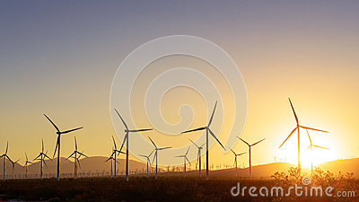 Thousands of wind turbines at sunset