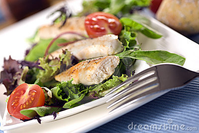 Threads of grilled chicken on garden salad
