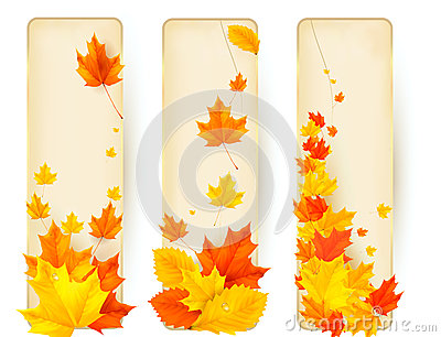 Three autumn banners with colorful leaves