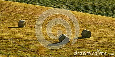 Three bals of hay
