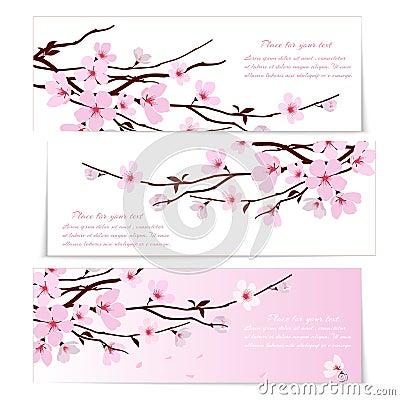 Free Three Banners With Sakura Flowers Stock Image - 40200241
