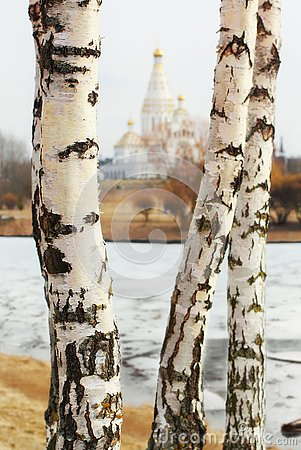 Free Three Birches Overlooking The Church Stock Photography - 142078952