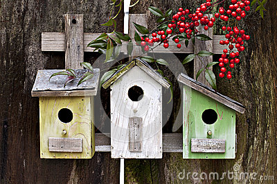 Three Birdhouses on old fence