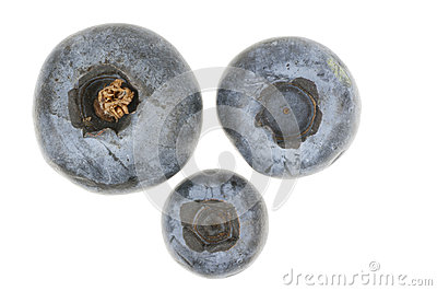 Three blueberries isolated in white