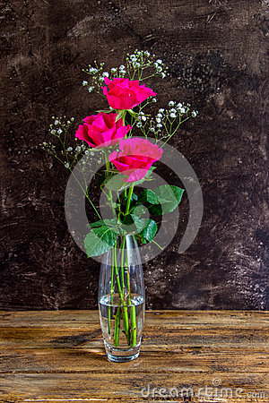 Free Three Bright Pink Roses Royalty Free Stock Images - 66705909
