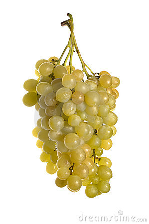 Free Three Bunches Of Grape Royalty Free Stock Photo - 3606835