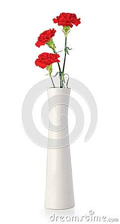 Free Three Carnation Flowers In White Vase Stock Photo - 24633090