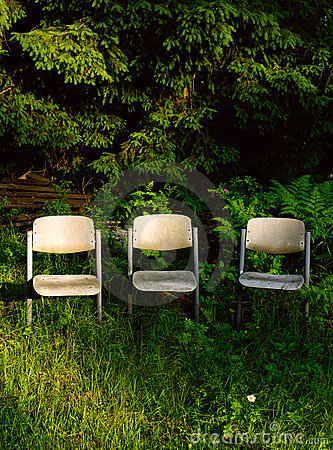 Three chairs in garden