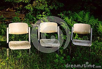 Three chairs in garden