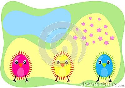 Three chicks on a field card
