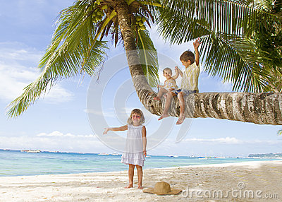 Three children on palm tree