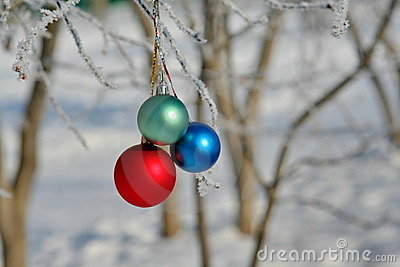 Three colour balls on a branch