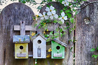Three cute little birdhouses on  wooden fence with flowers