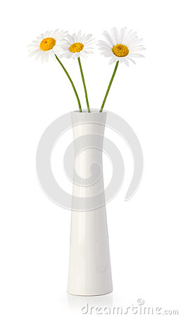 Free Three Daisy Flowers In White Vase Royalty Free Stock Photos - 24627078