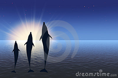 Three dolphins high jumping under water in rays sun