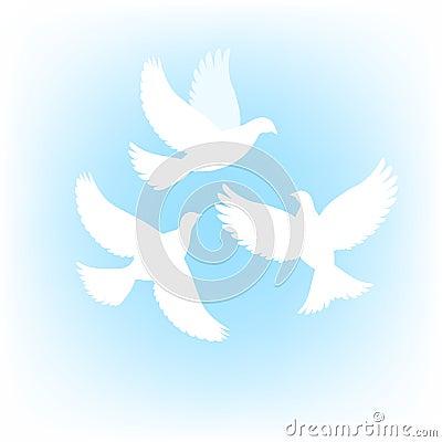 Three dove