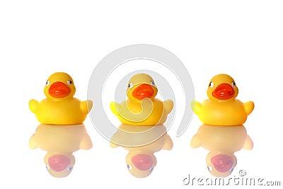The Three Ducks