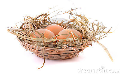 Three eggs in nest isolated