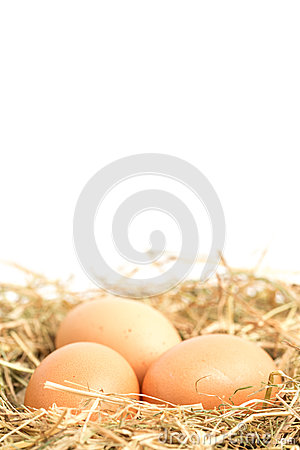 Three eggs nestled in straw nest