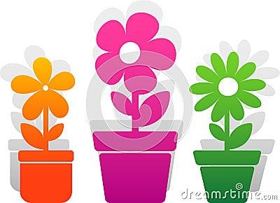 Three  flower