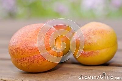 Three fresh apricots