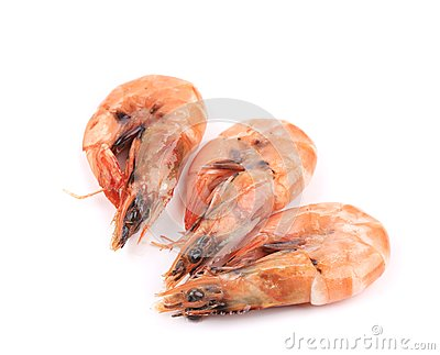 Three fresh boiled shrimps.