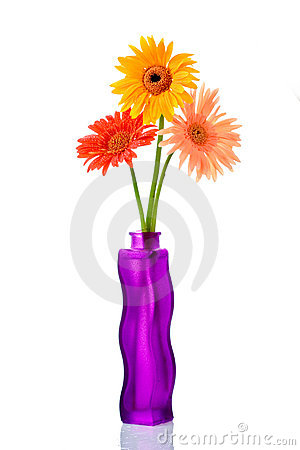 Free Three Gerberas In A Flower Vase Royalty Free Stock Image - 1011116