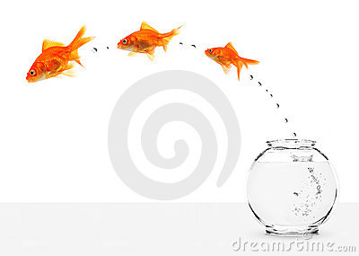 Three goldfishes escaping from fishbowl