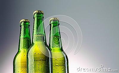 Three green beer bottles neck