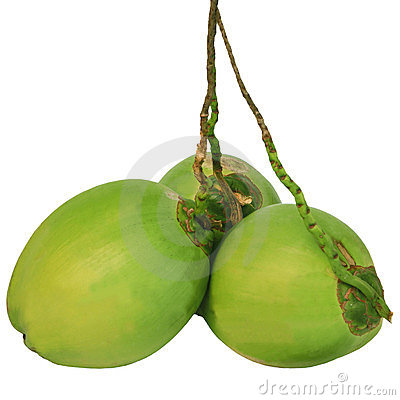 Three of green coconuts isolated on white
