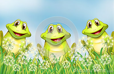 Three Happy Frogs In The Garden Stock Photo Image 30350060