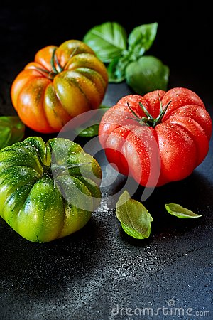 Free Three Healthy Wet Fresh Tomatoes With Copy Space Royalty Free Stock Photos - 116218918