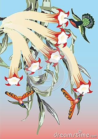 Three hummingbirds near flowers