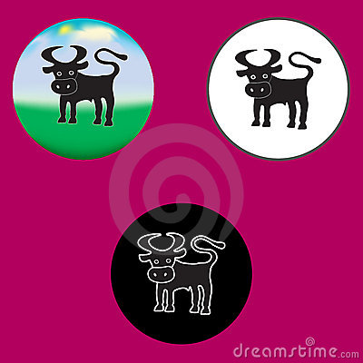 Three illustrations of the bull