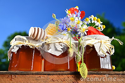 Three jars full of delicious fresh honey, piece of honeycomb honey dipper and wild flowers in apiary