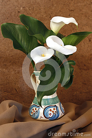 Three Lilies in a vase