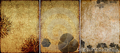 Three lovely background textures