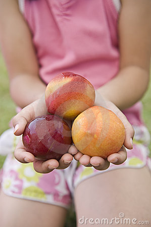 Three nectarines in child hands