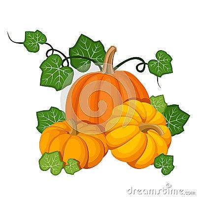 Three orange pumpkins.