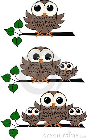 Three owl illustrations