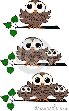 Three owl illustrations