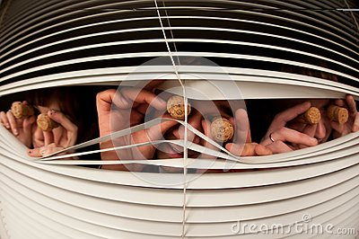 Three people look out of the window